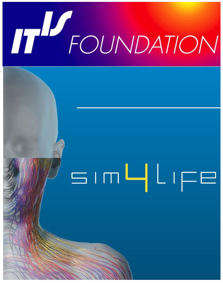 三维人体组织医学电磁仿真软件平台 Sim4Life
